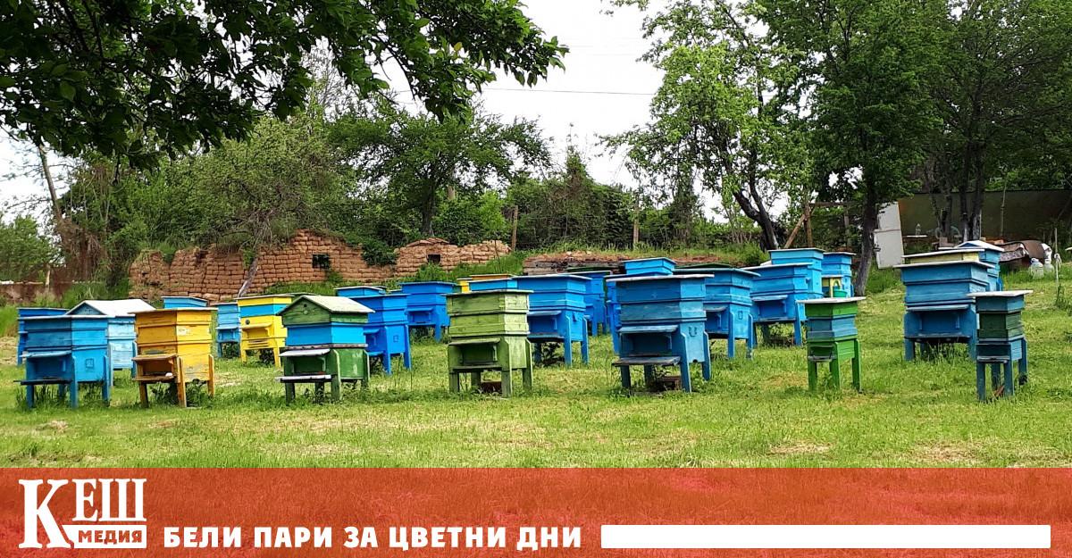 От днес пчеларите подават заявления за плащане