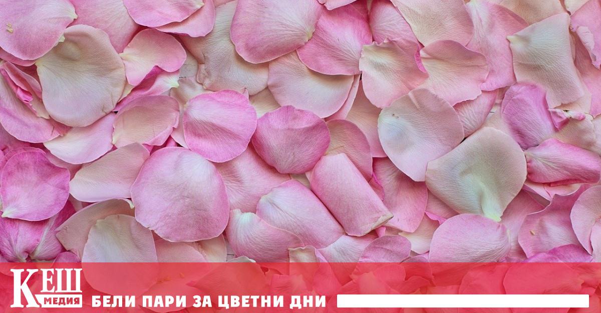 Срив в добива на розов цвят през тази година отчитат от МЗХГ