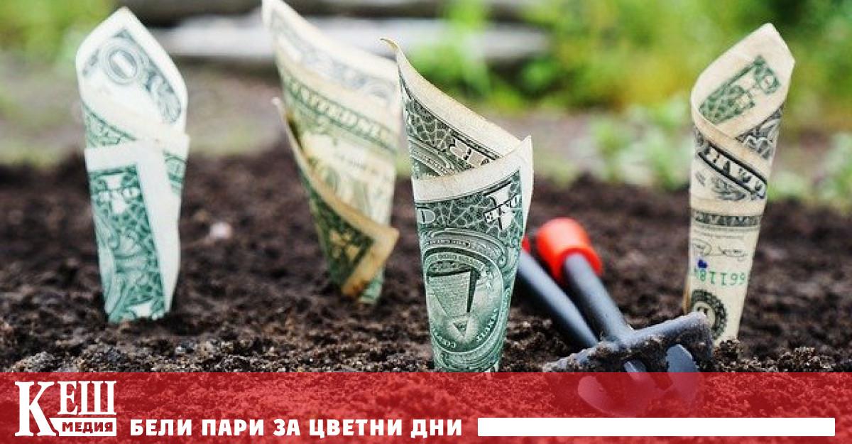 Това, което правят Министерството на икономиката и ББР в новите